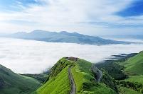 熊本県 阿蘇市 ラピュタの道