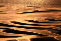 熊本県 宇土市 御興来海岸 夕日に染まる干潟