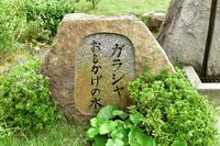 京都府 長岡京市 勝竜寺城公園 ガラシャ おもかげの水
