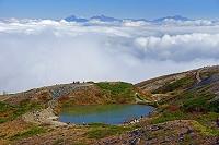 長野県 朝の八方池と雲海