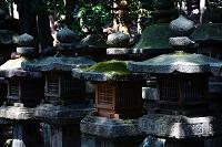 奈良県 春日大社 御間道の石灯籠