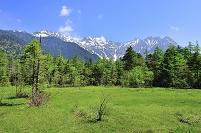 長野県 田代湿原より望む残雪の穂高連峰