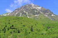 長野県 大正池より望む新緑の焼岳