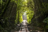 鹿児島県 安房歩道のトロッコ道