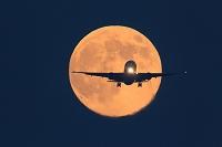 月バックで着陸するボーイング777の正面型