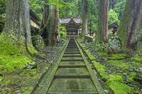 福井県 新緑の永平寺の唐門