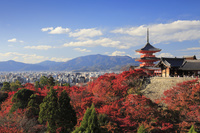 京都府 清水寺と紅葉