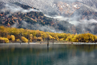 長野県 上高地 大正池の紅葉と雪