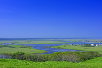 北海道 霧多布岬湿原