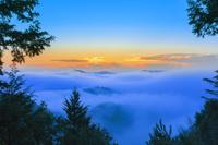 和歌山県 熊野の雲海
