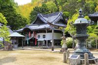 京都府 新緑の山崎聖天聖天堂