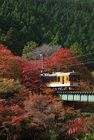 京都府 京都市 叡山電鉄