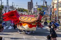 熊本県 八代妙見祭の亀蛇