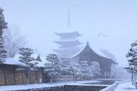 京都 東寺 雪