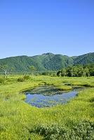 群馬県 竜宮十字路の池塘と景鶴山