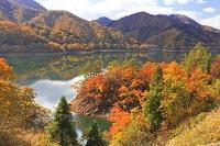 福井県 紅葉の九頭竜湖