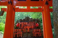 伏見稲荷社 風景
