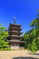 京都府 醍醐寺 五重塔
