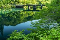 新潟県 加茂市水道貯水池2号 ダム 奥早出・粟・守門県立公園