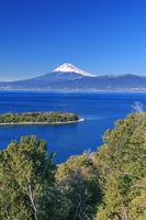 静岡県 大瀬崎より駿河湾と富士山