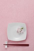 食器 桜の花
