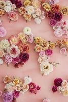 ピンクの壁と花