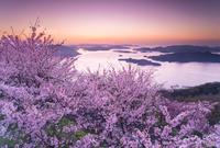 広島県 筆影山