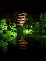 山口県 瑠璃光寺ライトアップ