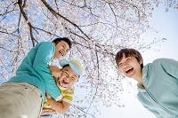 桜の咲く公園で遊ぶ日本人三人家族