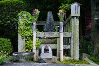 滋賀県 義仲寺 芭蕉の墓