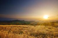 青森県 大黒森から望む折爪岳と高堂山方向の山並みとススキと朝日