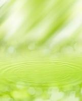 新緑のイメージ 波紋 CG