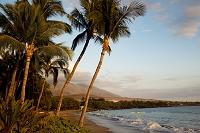 ハワイ マウイ島 ハナカオオ・ビーチパーク