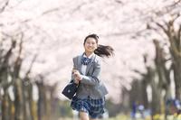 桜並木の下を走る女子中学生