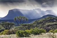 ケニア イシオロ郡 シャバ国立保護区