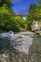 徳島県 奥祖谷二重かずら橋