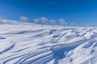 北海道 美幌峠 霧氷と雪原