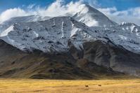 アメリカ アラスカ モフィット山