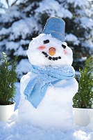 笑顔の雪だるま