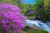 栃木県 竜頭の滝