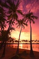 ハワイ アナエホオマル・ビーチ