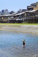 京都府 鴨川で釣りをする人と納涼床