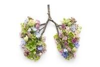 肺の形の花