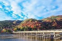 京都 嵐山 渡月橋と紅葉