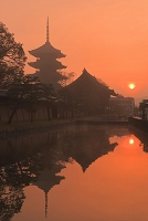 京都府 霧の日の出の東寺
