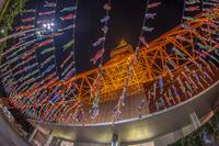 東京タワーライトアップと鯉のぼり