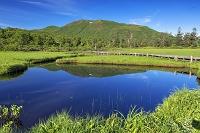 北海道 神仙沼高層湿原