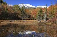 新雪の乗鞍岳と紅葉のどじょう池