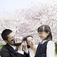 桜と記念撮影をする家族