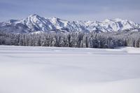 新潟県 妙高山雪景色